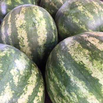 1Watermelons