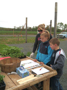 A family chooses which plants to grow in their plot