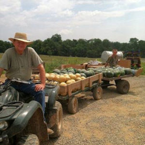 Rick brings fresh picked produce in from the fields